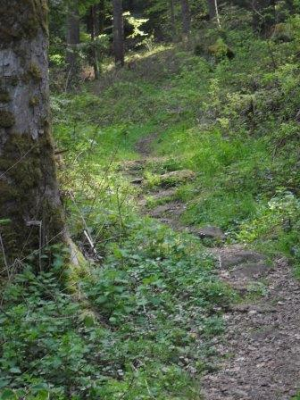 Trail-2